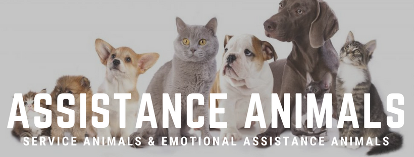 Assistance Animals